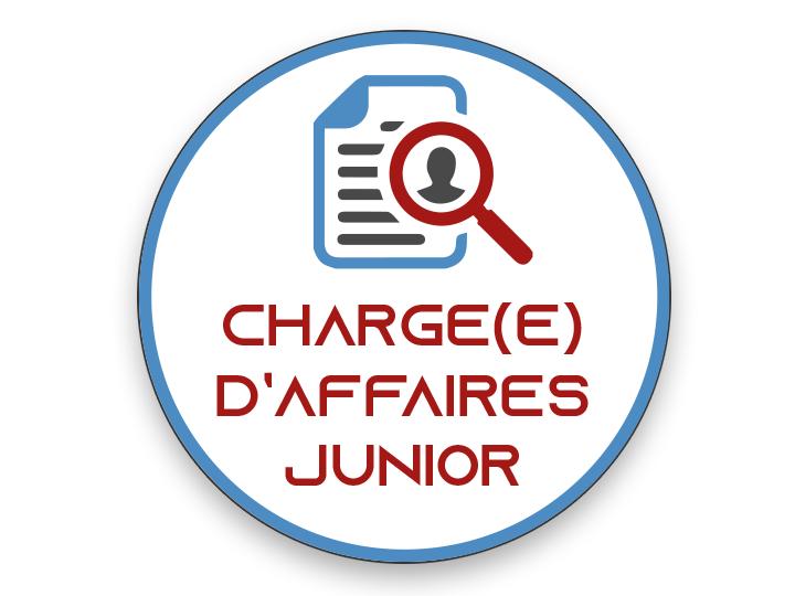 OFFRE D'EMPLOI CHARGÉE D'AFFAIRES JUNIOR