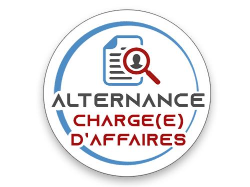 OFFRE CONTRAT ALTERNANCE Chargé(e) d'Affaires Solutions Digitales Sport-Business